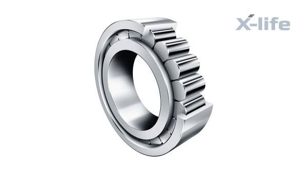 Schaeffler-wentellagers en -glijlagers: Volrollige cilinderrollagers